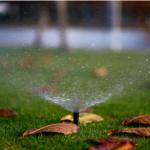 irrigation companies in Sylvania, Ohio,