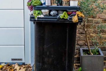 Find It Difficult To Manage Waste? Here's How Waste Solutions Can Help